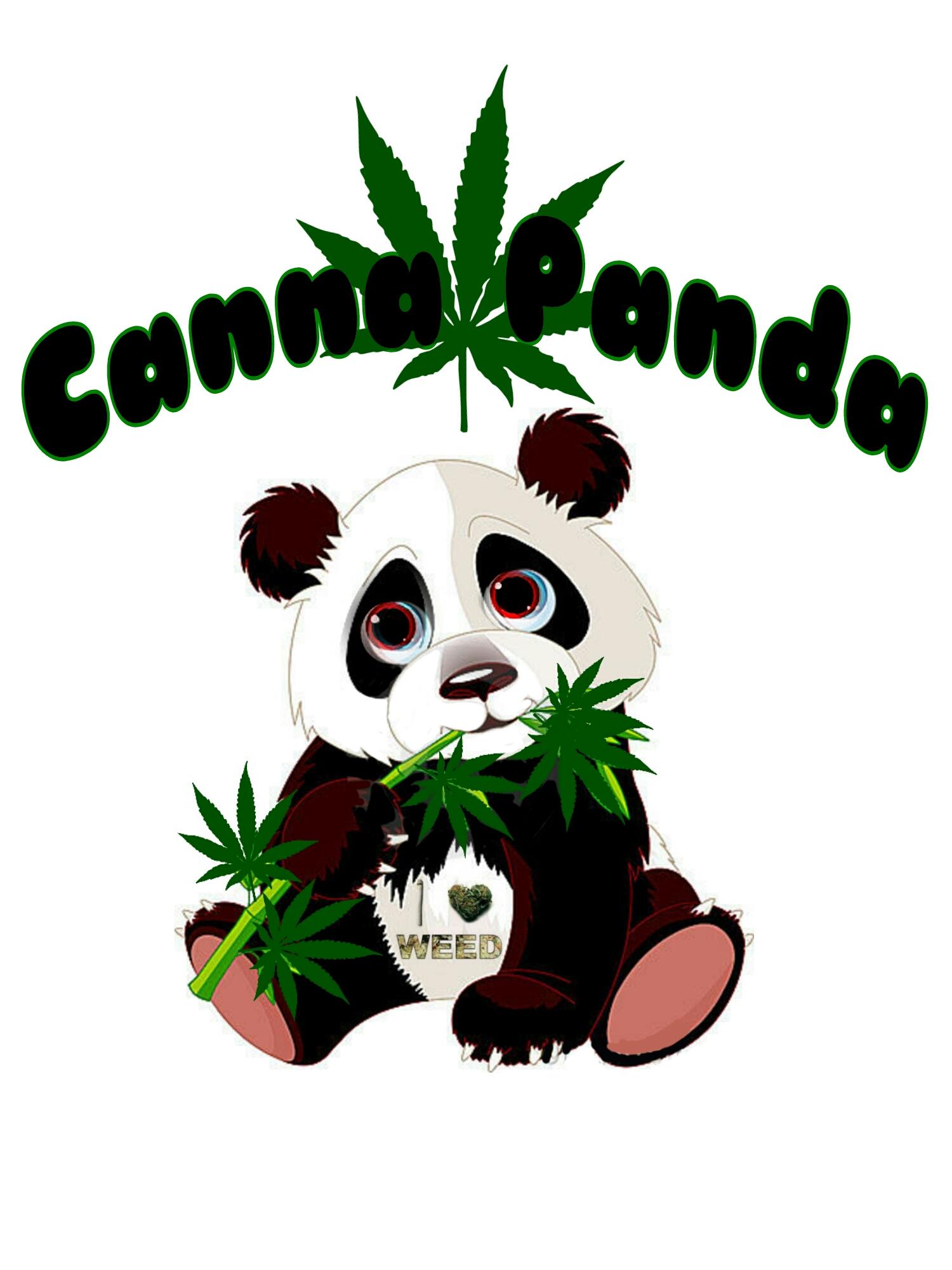 Logo for Canna Panda
