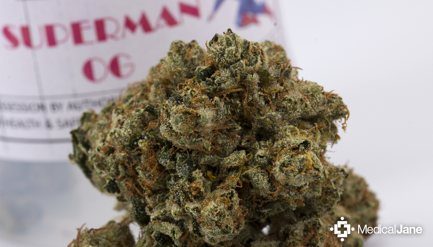 Superman OG Marijuana Strain