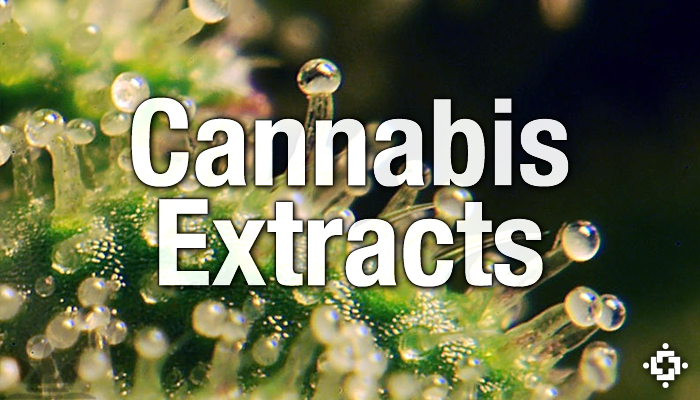 Cannabis Extraction Methods | Marijuana Concentrates