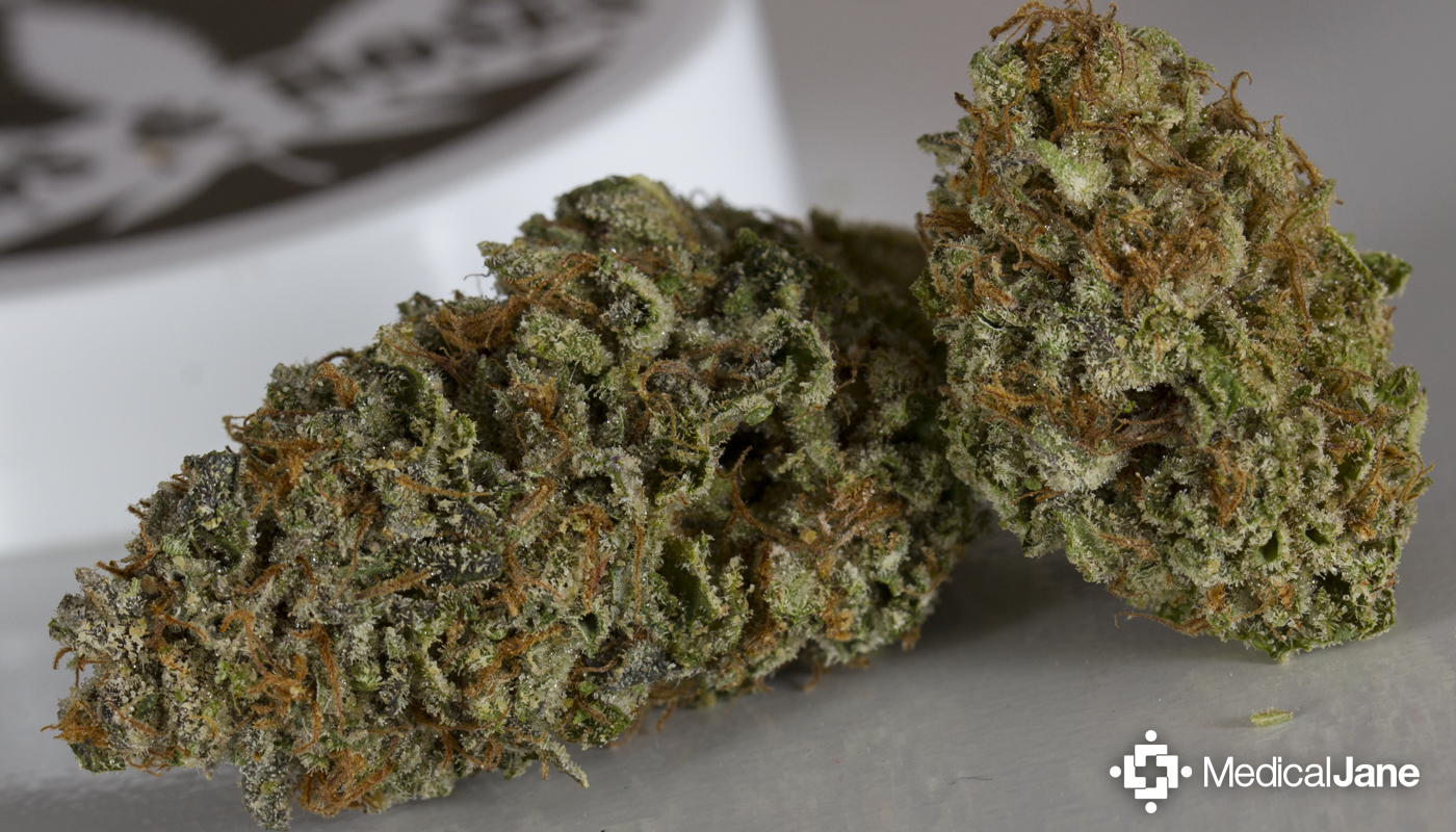 The Ken's Kush Strain Grown By Kyle Kushman, Buds And Roses