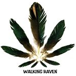 Logo for Walking Raven, LLC