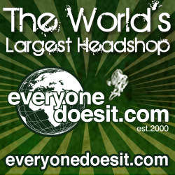 Logo for EverybodyDoesIT