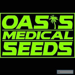 Logo for Oasis Medical Seeds