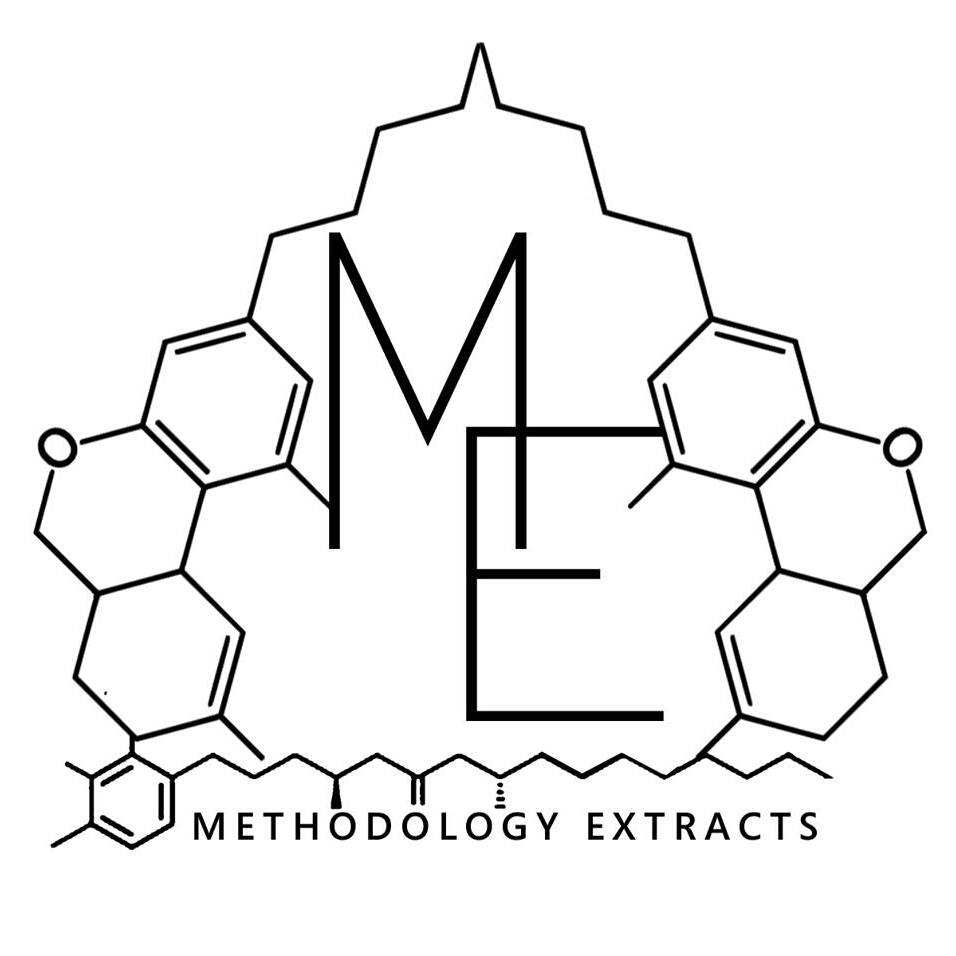 Logo for Methodology Extracts