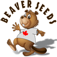 Logo for Beaver Seeds