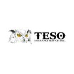 Logo for TESO Insurance Services
