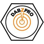 Logo for Dabzpro