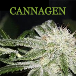 Logo for Cannagen LLC