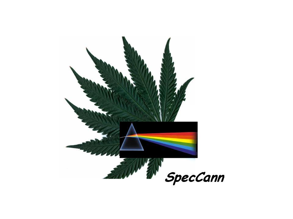 Logo for SpecCann International