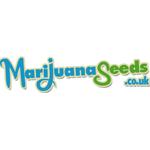 Logo for MarijuanaSeeds.co.uk