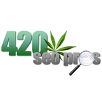 Logo for 420 SEO Pros