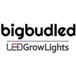 Logo for BigBud LED
