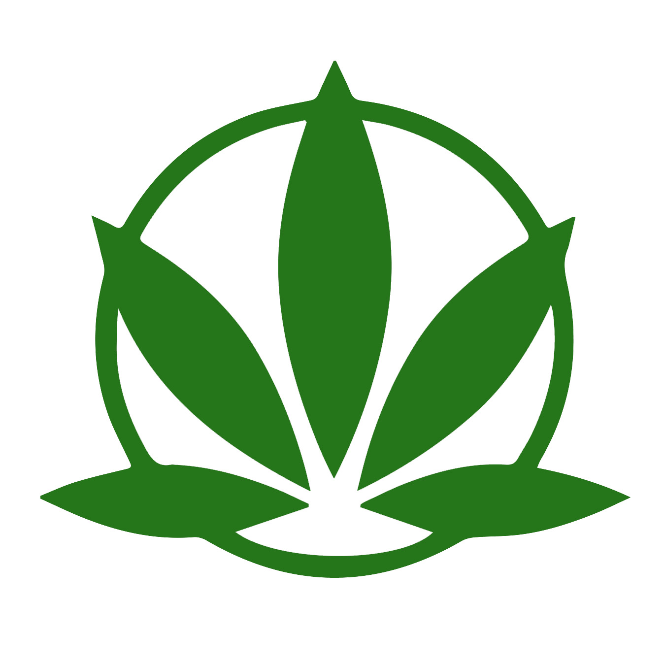 Logo for Cannabis Access Alliance