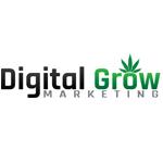 Logo for DigitalGrow Marketing