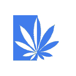 Logo for Northeastern Cannabis