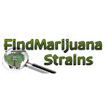 Logo for FindMarijuanaStrains.com