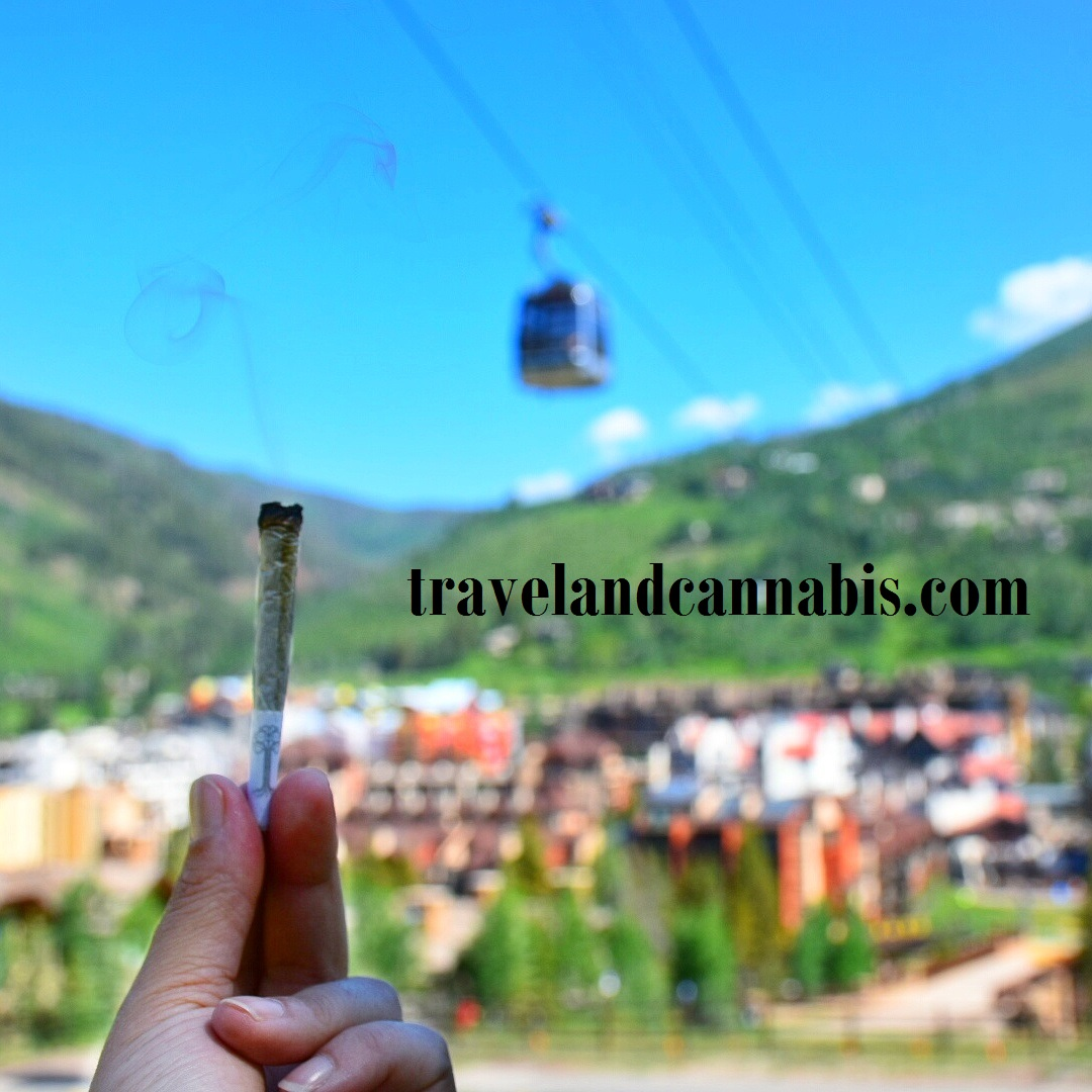 Logo for TravelandCannabis.com