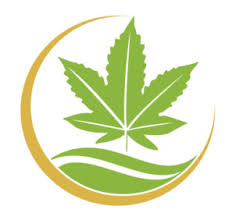 Logo for CBD Oil Creations