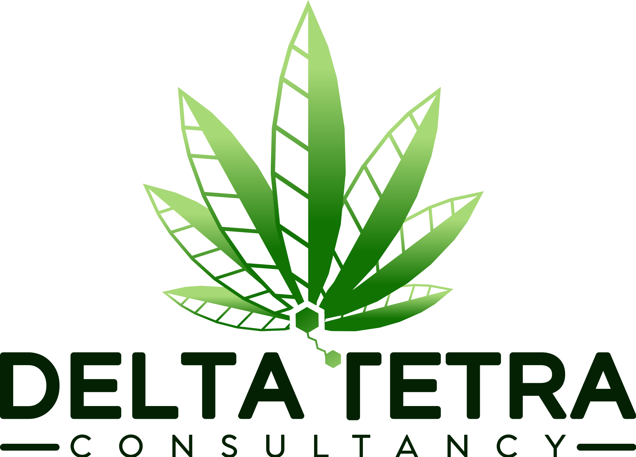 Logo for Delta Tetra Consulting