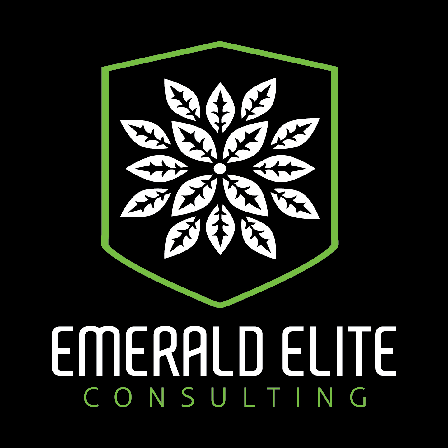 Logo for Emerald Elite Consulting