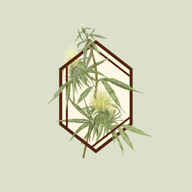 Logo for The Botanist