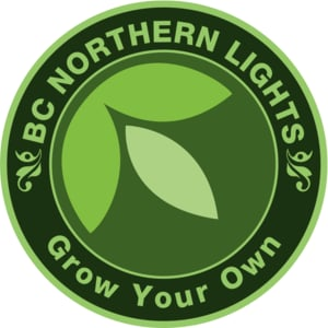 Logo for BC Northern Lights