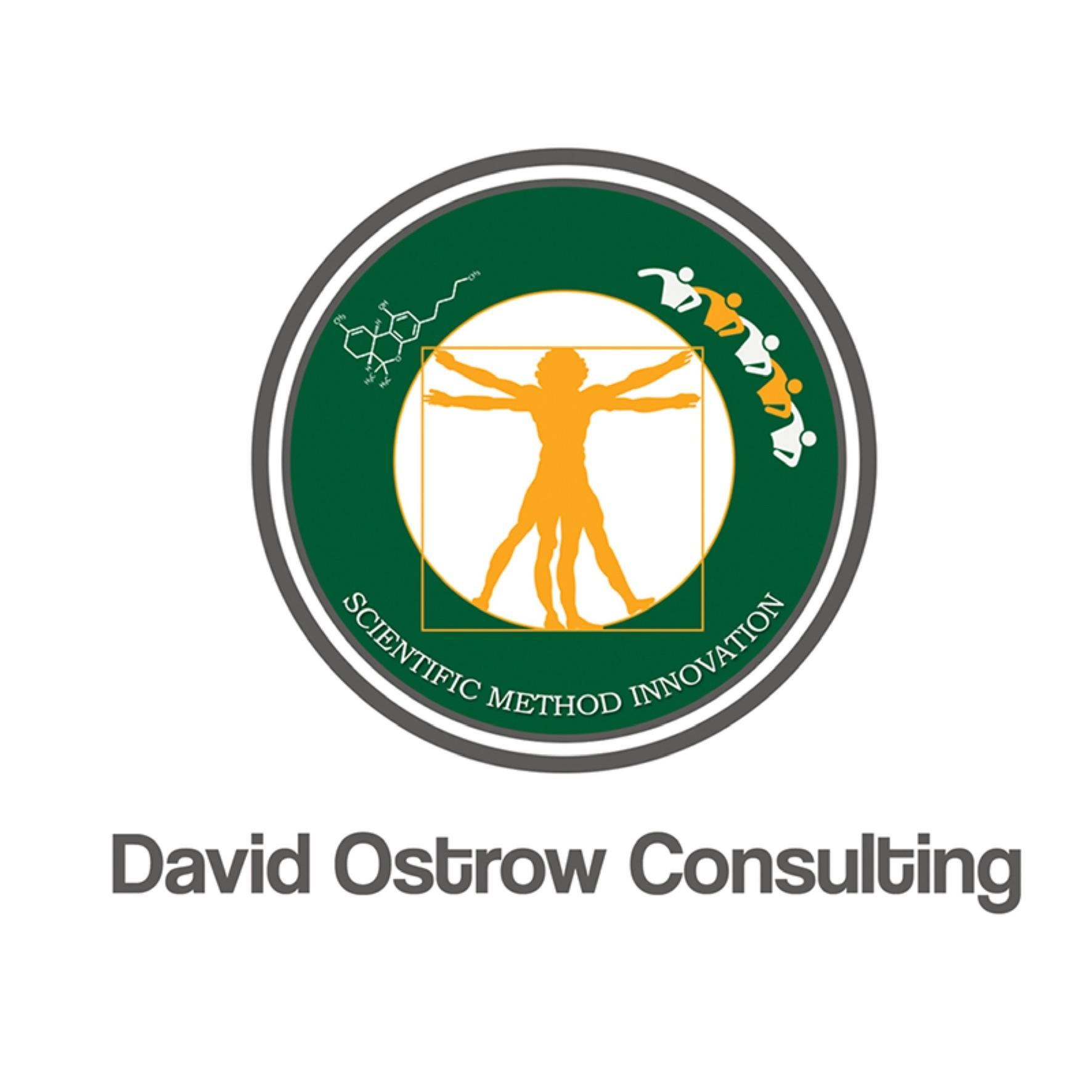 Logo for David Ostrow & Associates