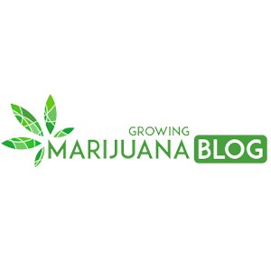 Logo for GrowingMarijuanaBlog