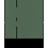Logo for Ventura Seed Company