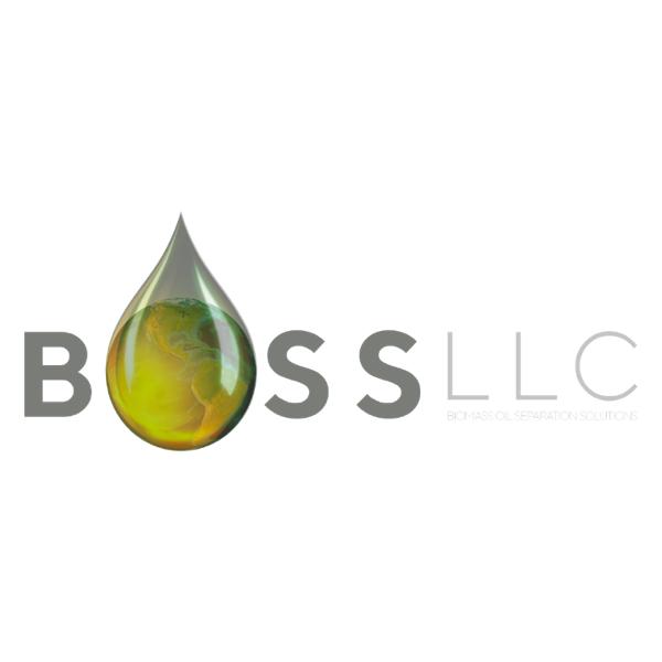 Logo for BOSS LLC